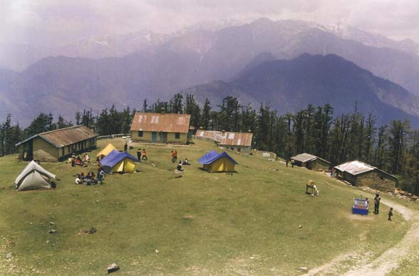 Dhakuri Meadows